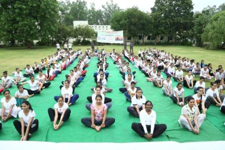Yoga Performed by Students and Staff Members